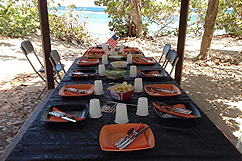 Table de picnic Fish'on
