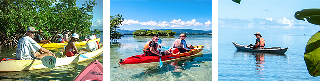 excursion kayak ilet mangrove guadeloupe