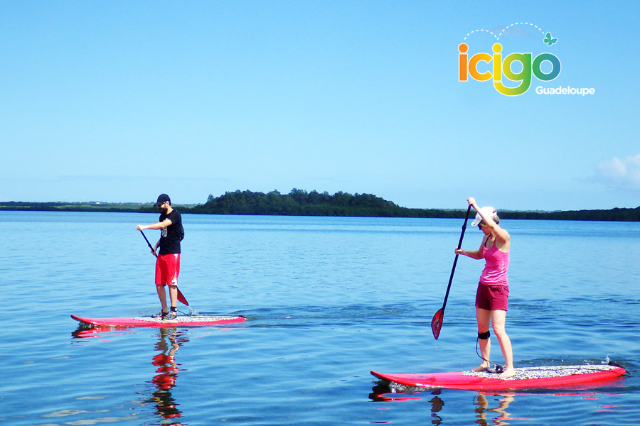 stand up paddle duo.JPG