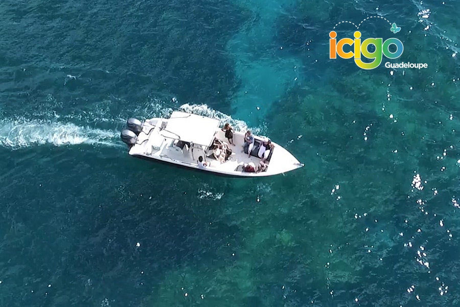 3 bateau decouverte tortues marines Guadeloupe