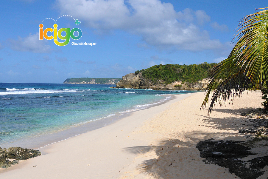 plage anse laborde gt