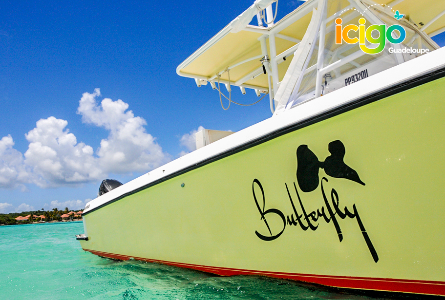 Click to enlarge image plan-cote-bateau-butterfly-ok.jpg