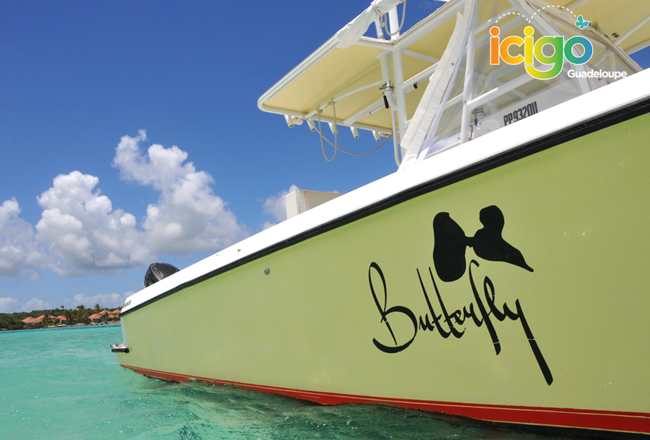 Click to enlarge image plan-cote-bateau-butterfly.jpg