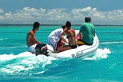 Bateau excursion mangrove et barrière de corail